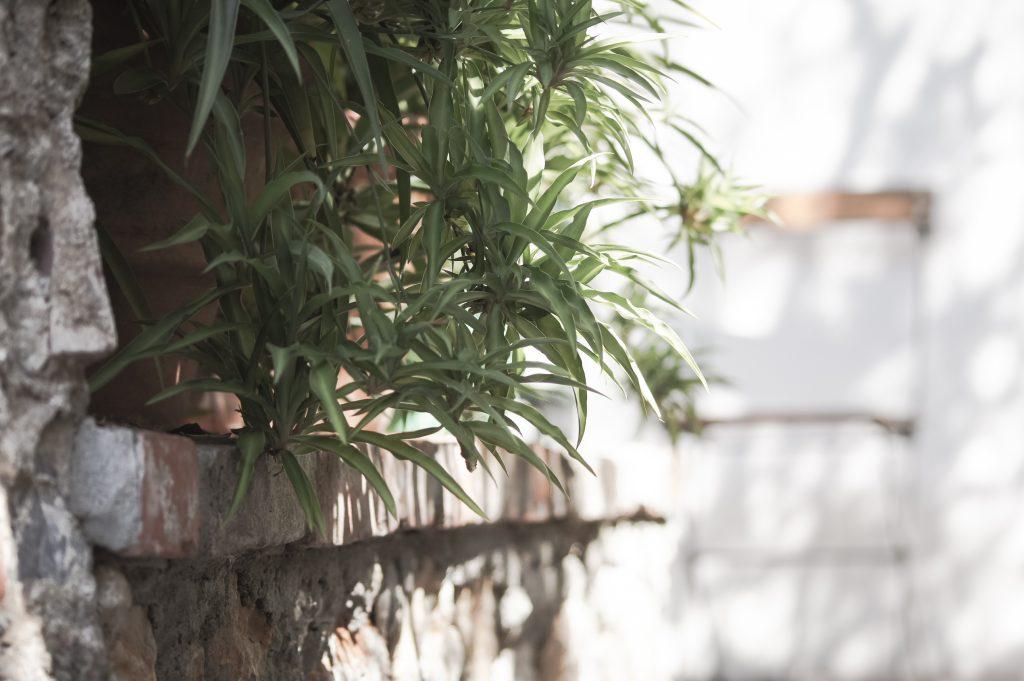 Lerici – Chalet Garten