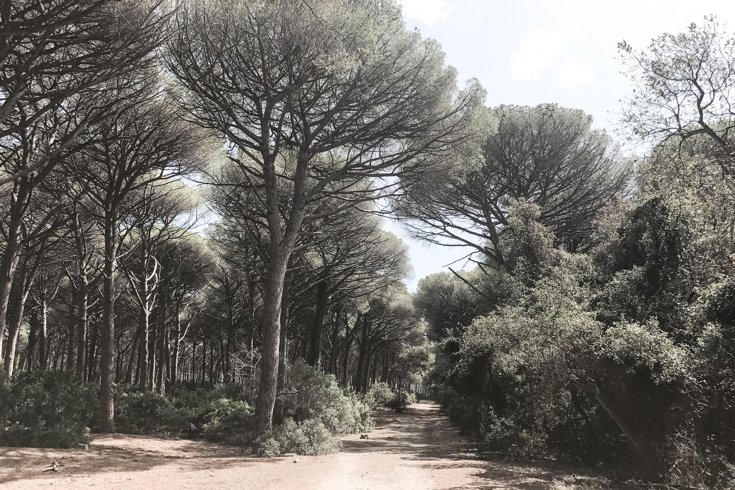 Spaggia Playa Del Can – La Tenda Gialla